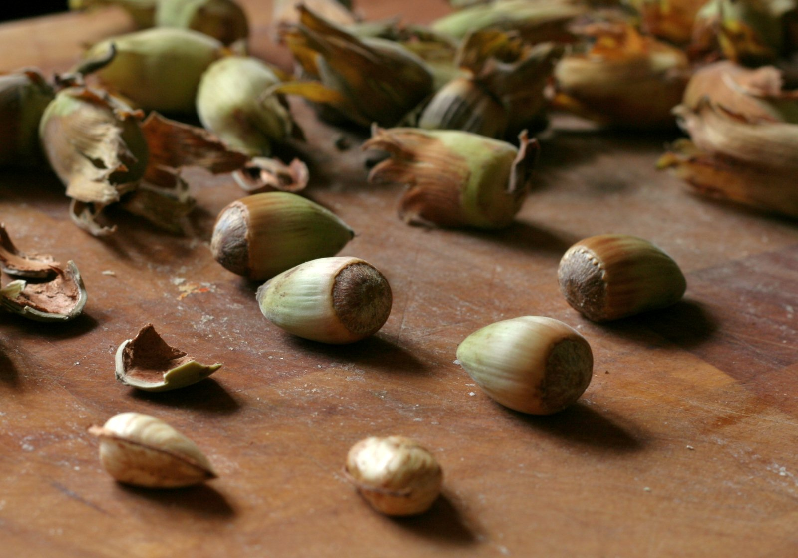 Ark of Taste Product of the Month - Kentish Cobnuts