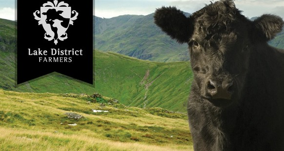 And the winner is... Lake District Farmers!