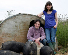 Jon and Charlotte Clarkson - Three Little Pigs - Berkshire Pig