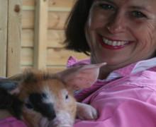 Susan Tanner - Plum Pudding Pigs - Oxford Sandy & Black Pigs