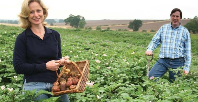 Lucy and Anthony Carroll – Carroll's Heritage Potatoes – Shetland Black Potato