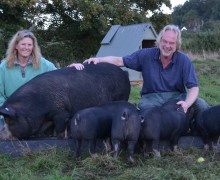 Robert and Sara Buttle - Buttle Farm - Ark of Taste Pig Breeds