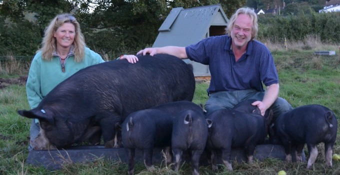 Robert and Sara Buttle – Buttle Farm – Ark of Taste Pig Breeds