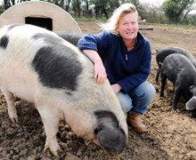 Lara and Oliver Madge - Park Mill Farm - Gloucester Old Spot Pig