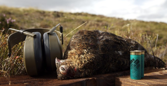 Ben Weatherall – The Blackface Meat Company – British Red Grouse