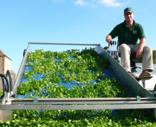 Sean and Penny Ede - The Watercress Company - Traditionally Grown Hampshire Watercress