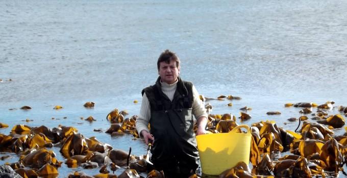Iain Mckellar – Just Seaweed – Dulse Seaweed