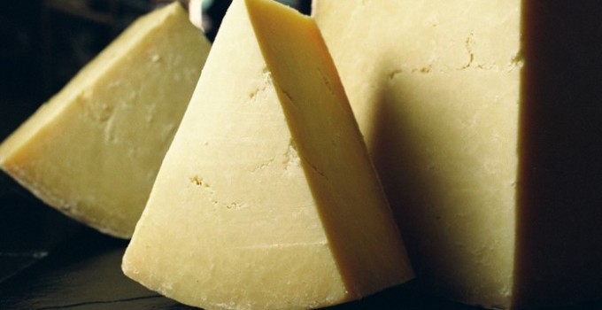 Producers – Cheese and Dairy