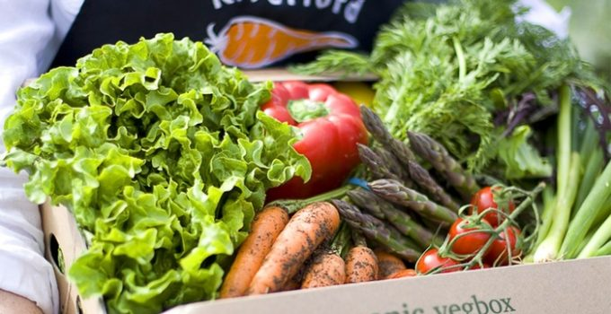 Win a Riverford Medium Veg Box, every week for 3 months