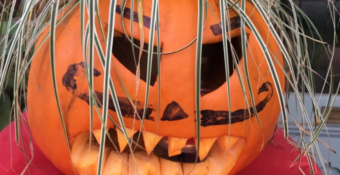 Food Scare Story – not just for Halloween